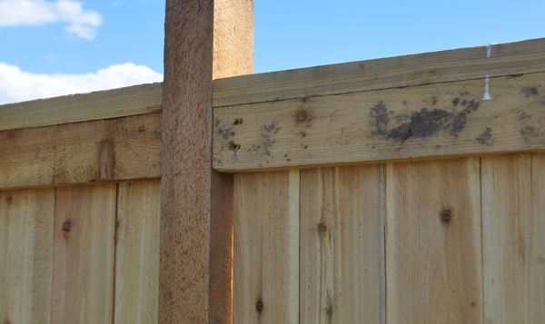Wood Fence Ideas Backyards Yards