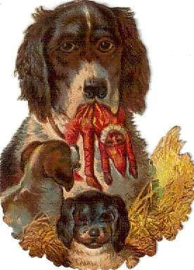 Victorian Die Cut Scrap Mama Dog w Puppies & Punch Doll c1880