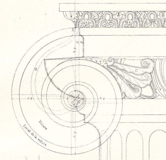 Ionic Order Capital, Architectural Drawing Print by Vignola