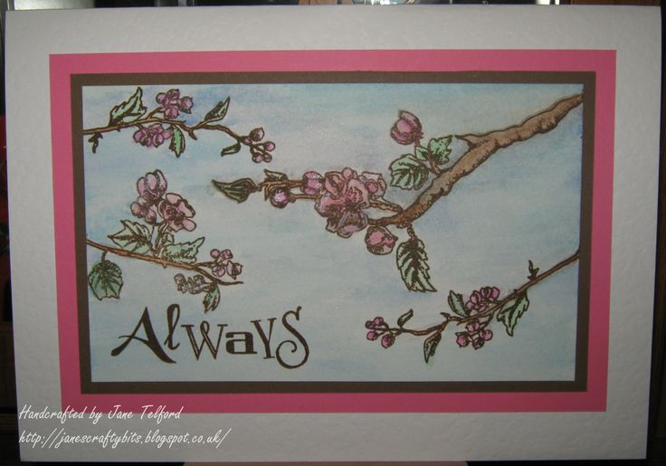 Sample from March Clarity Stamp Show on C&C by Jane Telford