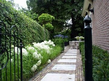 Beautiful entrance to what must be a very lovely backyard.
