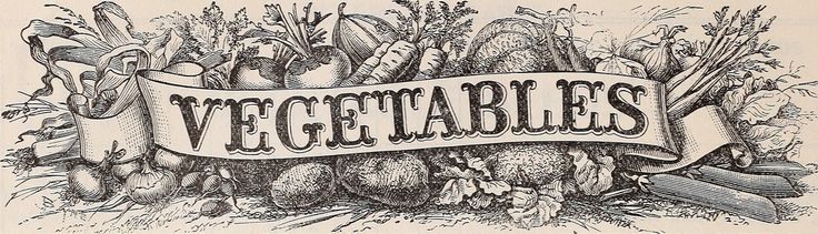 Identifier: 18thannualcatalo1903germ Title: 18th annual catalogue of the Germain Seed and Plant Co Year: 1903 (1900s) Authors:  Germain Seed and Plant Company Henry G. Gilbert Nursery and Seed Trade Catalog Collection Subjects:  Nurseries (Horticulture) Catalogs Flowers Seeds Catalogs Plants, Ornamental Catalogs Vegetables Seeds Catalogs Fruit trees Catalogs Greenhouse plants Catalogs Poultry Equipment and supplies Catalogs Gardening Equipment and supplies Catalogs Publisher:  Los Angeles…