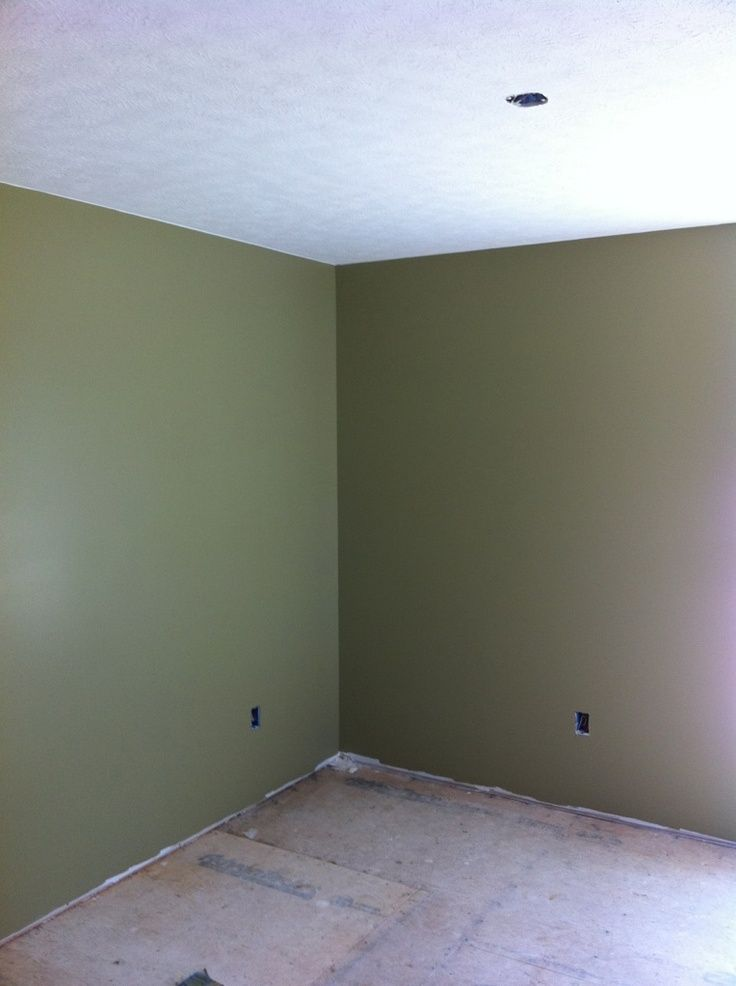 25 Best Sage Wall Color Images On Pinterest Wall Colors