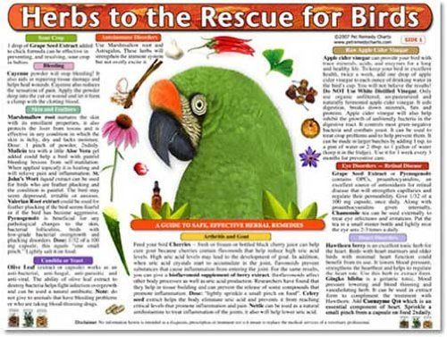 Pet Remedy Charts Herbs to the Rescue for Birds Price