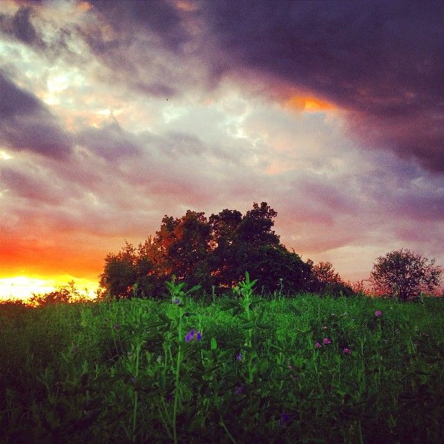 Dramatic Ontario sunset by halfpastviolet.