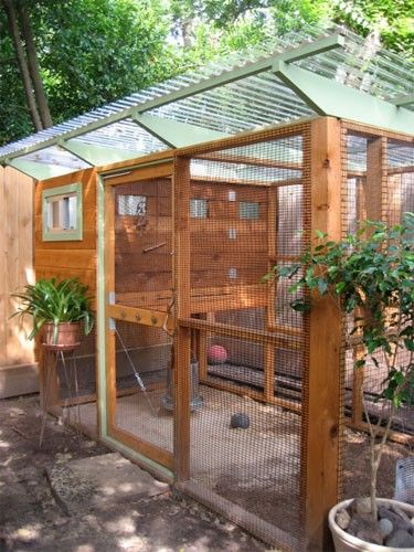 A chicken coop that is large enough to be an aviary as well.