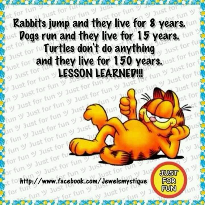Funny Garfield