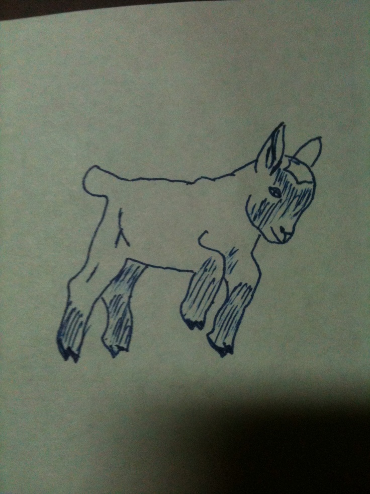 1000+ images about Goat Tattoos on Pinterest | Horns, Nyc ...