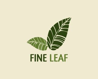 Fine leaf Logo design