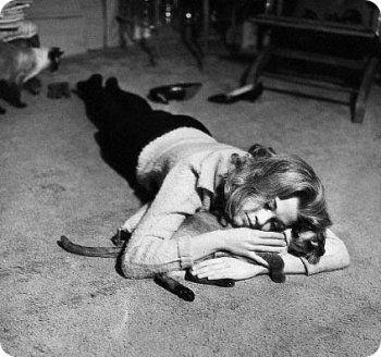 Jane Fonda gatitos siameses Famosos posando con sus gatos