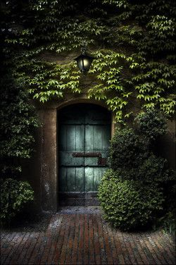 Loving this door... the green on the door, and the vegetation around it.