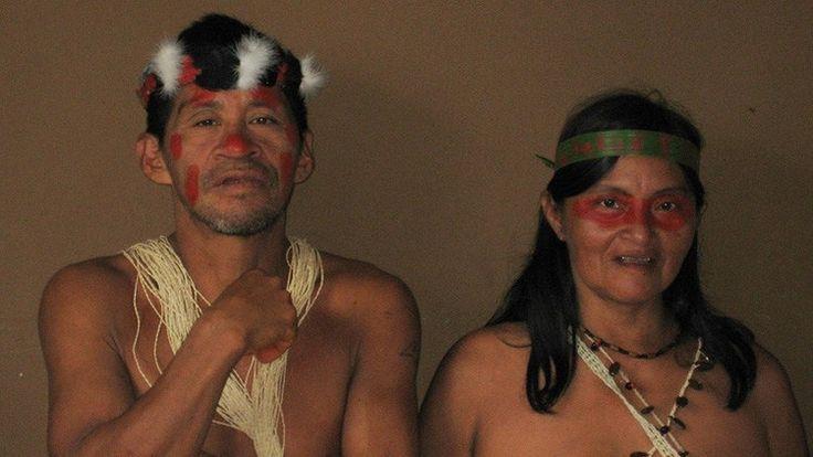 La historia de los misioneros estadounidenses asesinados por indígenas de Ecuador   Una pareja de huaorani en 2006 Hace más de 60 años, una noticia sacudió al mundo: cinco misioneros protestantes de EE.UU. fueron asesinados en la selva ecuatoriana por nativos a los que habían ido a evangelizar.  Jim Elliot, Nate Saint, Ed McCully, Peter Fleming y Roger Youderian son los nombres de los cinco misioneros estadounidenses que fueron asesinados el 8 de enero de 1956 en Ecuador. La tribu de los…