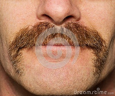 Movember Mustache - Download From Over 50 Million High Quality Stock Photos, Images, Vectors. Sign up for FREE today. Image: 47145792