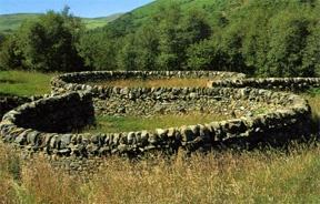Andy Goldsworthy, The wall Stonework - Joe Smith Stonewood, Dumfriesshire, 1988-89