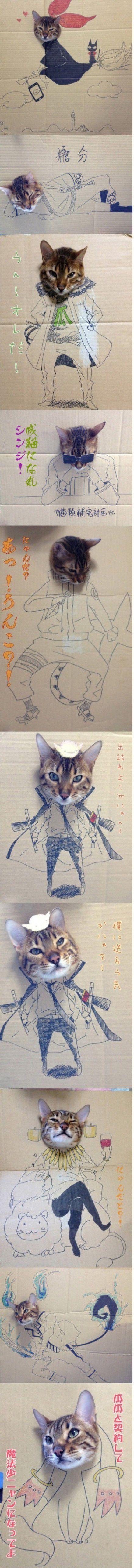 Ya les había dicho que los gatos son la cosa mas hermosa del mundo *0*