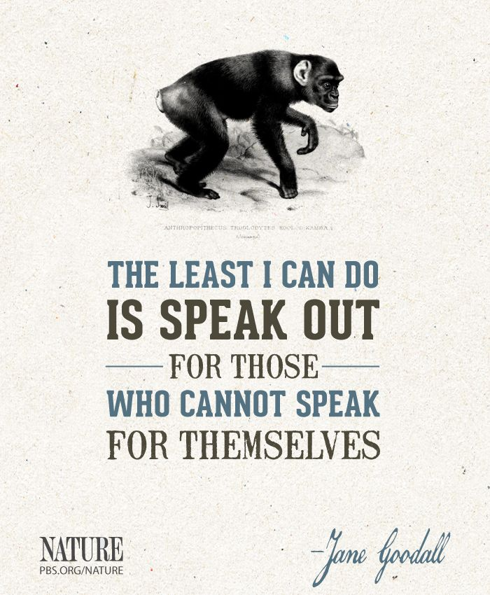 """The least I can do is speak out for those who cannot speak for themselves."" -- Jane Goodall"