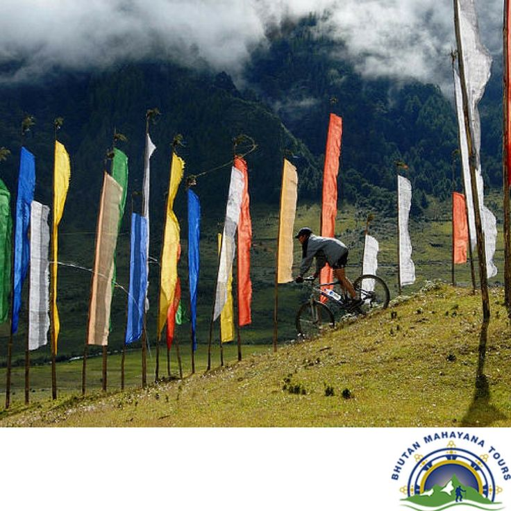 Are you a lover of biking/cycling tour?? Exploring Bhutan On A Cycle: The most thrilling and adventurous biking trip will give you a chance to visit some of the prominent cultural sites of Bhutan apart from the picturesque and quaint locales of the country.  http://www.bhutanmahayanatours.com/biking.html  #cyclingtour #bikingtour #explorebhutan #visiting #travels #tourist