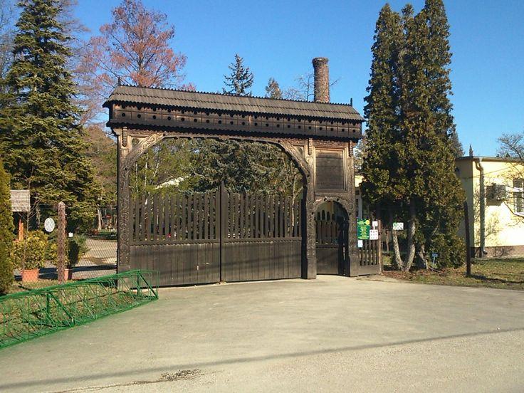 Füvészkert in Szeged, Csongrád megye