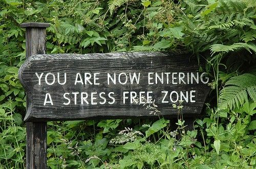 """William James has aptly said that, """"The greatest weapon against stress is our ability to choose one thought over another."""" """"STRESS"""" has become very common word now days. In 21st century we all have bulks and bulks of expectations from our life, relationships, colleagues, friends and the people whom we meet often. ... ..."""