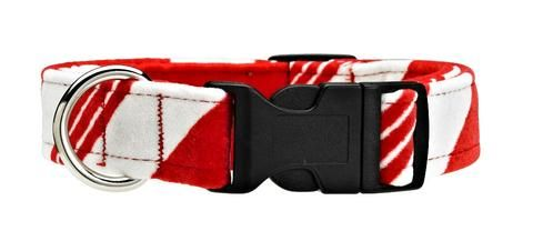Collars & Leashes - Bowsers Dog Collar - Peppermint Stripe