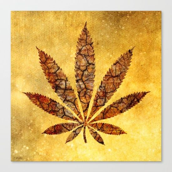 My Vintage Cannabis Leaf canvas prints are 15% off right now on Society6, free shipping!