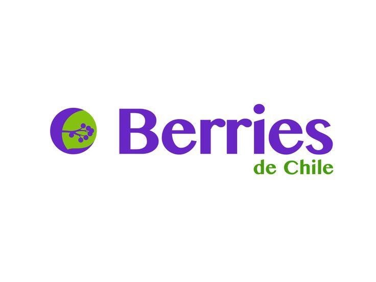 Desarrollo de Identidad para empresa Berries de Chile