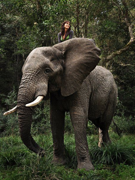 Wild and free in Knysna, South Africa (2010)