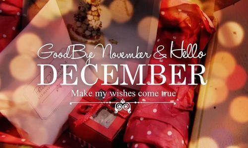 Goodbye November Hello December Winter Make My Dreams Come True
