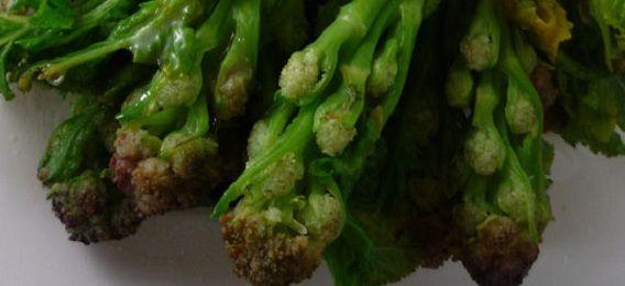 Hervir el brócoli es la manera más fácil de cocinar esta saludable verdura. Hoy te desvelamos los mejores trucos sobre como cocer brocoli ¡aprovéchalos!