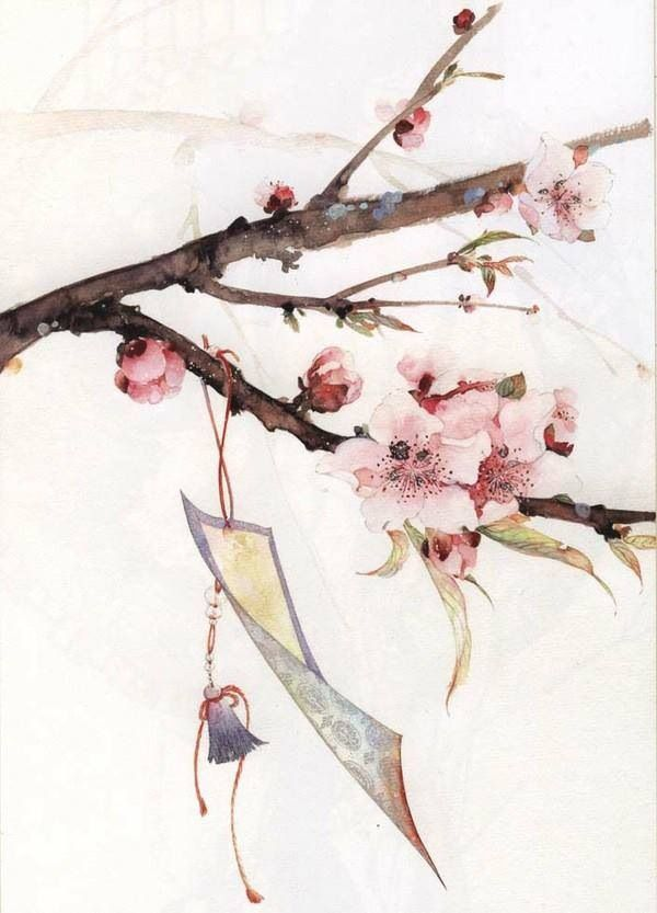 A wish on cherry branch, by Ibuki Satsuki.