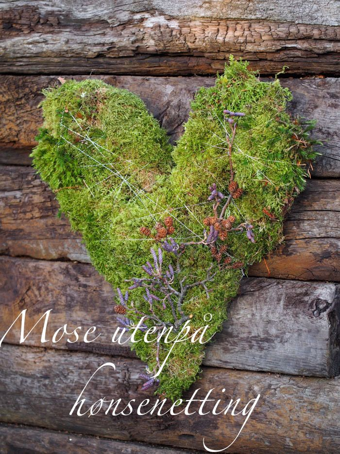 How to make a moss covered heart.