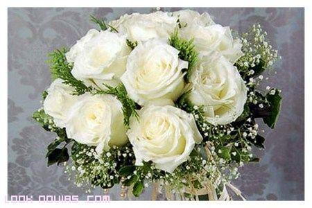 rosas para novia