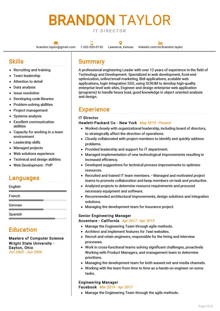 The most professional IT Director resume