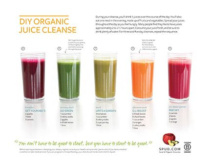 DIY Organic Juice Cleanse Recipes, 5 juices a day, you can do  this cleanse for 1, 3, or 5 days, (there's a printable version if you follow the link)