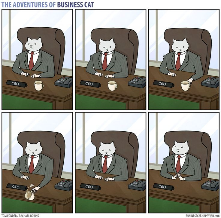 The Adventures Of Business Cat - How Your Office Would Look If Your Boss Was A Cat