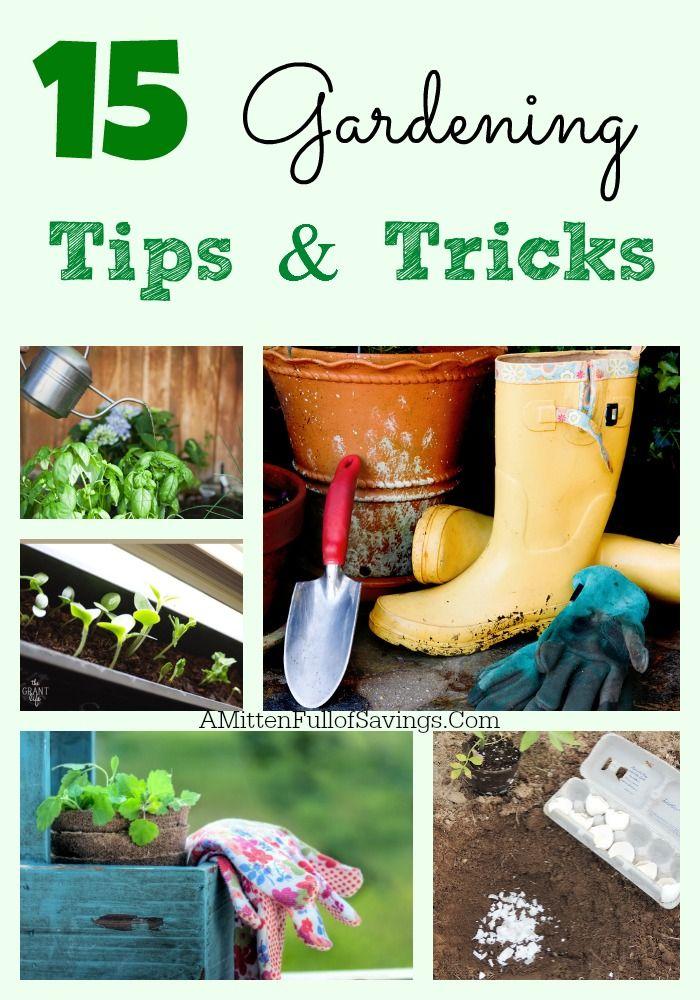 15 Gardening Tips Tricks Gardens The O 39 Jays And Money