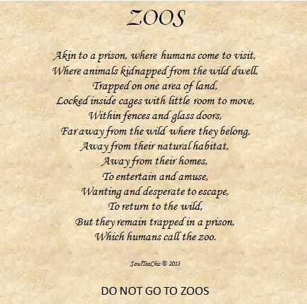 Zoos. Do not go to zoos. #AnimalRights #confinement