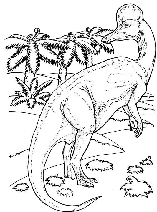 Corythosaurus From Late Cretaceous Period In Dinosaur Coloring Page PagesJurassic WorldMotelDinosaursPink