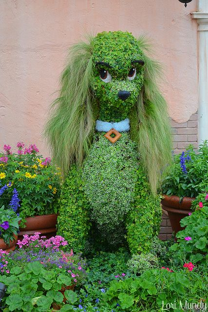 Lady / tramp topiary plant art. Group board https://www.pinterest.com/busyqueen4u/pinterest-group-u-pin-it-here/