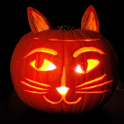 Definitely doing a cute kitty pumpkin for the cat person in the house (aka Maya)!