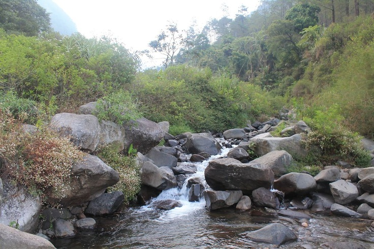 the beautiful of gunung puntang, indonesia