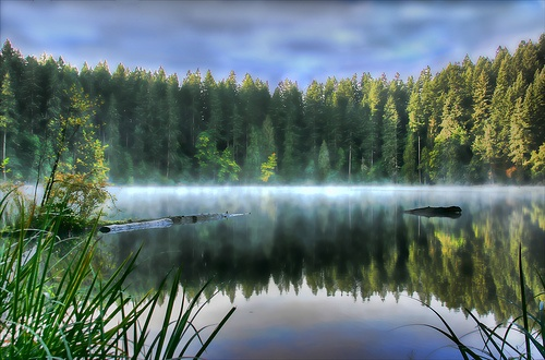 Battle Ground Lake ~ Battle Ground, Washington... I live here and have never seen the lake like this!