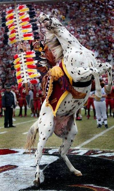 The best pre-game in all of college football. It gives me chills everytime I see it and can hear the War Chant. GO NOLES!