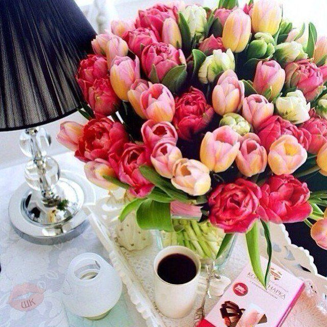С ДОБРЫМ УТРОМ, С НОВЫМ ДНЕМ, Пусть он принесет удачу, С каждым солнечным лучом Пусть к тебе приходит счастье.  С добрым утром, новый день Манит новыми делами. Пусть удача, словно тень, Ходит за тобой кругами!  #хорошеенастроение #мотивация #красота #красотатут #jenskiimirok #советдня