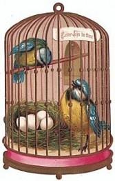 Victorian bird cage.