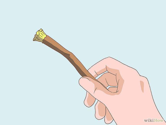 #Miswak #oralcare #toothbrush
