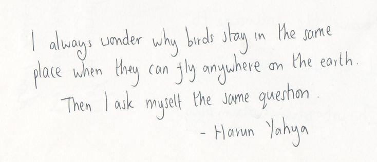 idea: Birds Wordstoliveby, Harun Yahya, Birds Vrs, Life Inspirations, Quotes Life, Inspiration Quotes, Diary Of Quotes Tumblr Com, Favourite Quotes, Favorite Quotes Lyrics