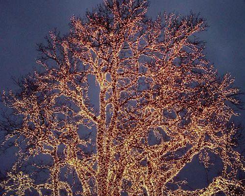 Christmas Lights.. Gothenburg, Sweden