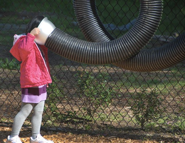 sound exploration as part of the natural playscape at COW HOLLOW SCHOOL in San Francisco. work by Surfacedesign, Inc.