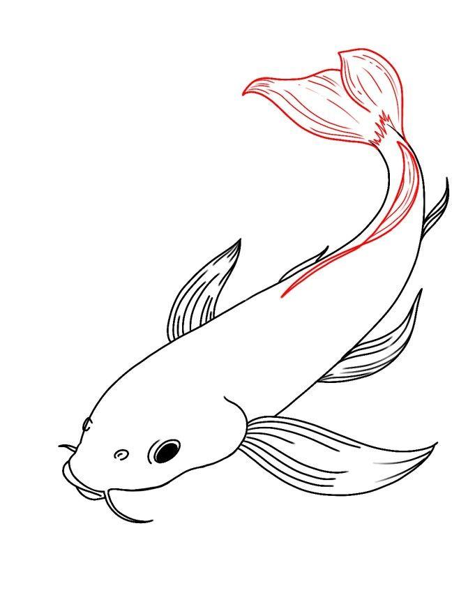 How To Draw Koi Fish Carpe Koi Dessin Peinture Koi Dessin Chat